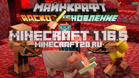 Скачать Майнкрафт 1.16.5 (Полная версия)